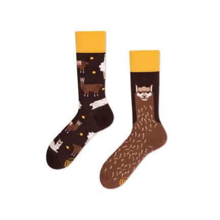 Bunte Socken Lustige Socken Many Mornings Vegane Socken Köln Ehrenfeld