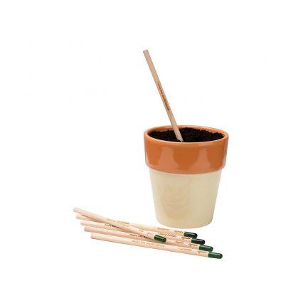 Sprout Bleistift mit Samen dressgoat Köln Ehrenfeld