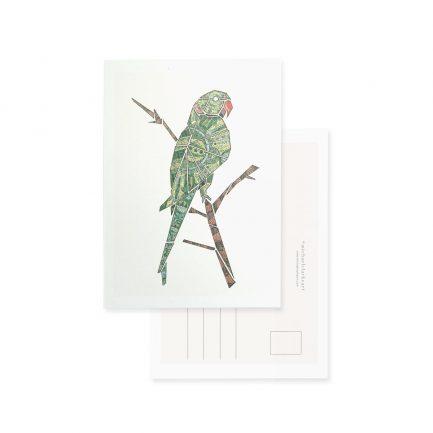 Michael Clarke Art Postkarte dressgoat